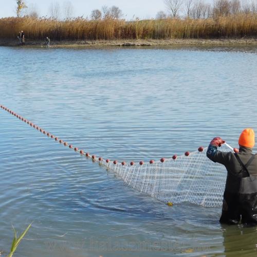 Halászat húzóháló ősz