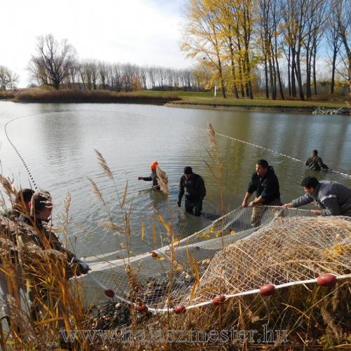 Halászat taposás
