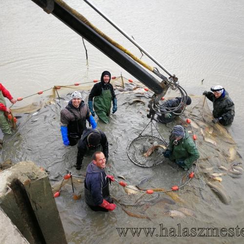 Halász brigád jókedv