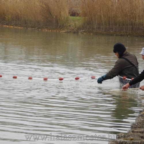 halászat ellenőrzés