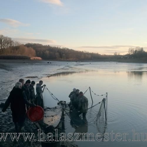 Bérhalászat naplemente