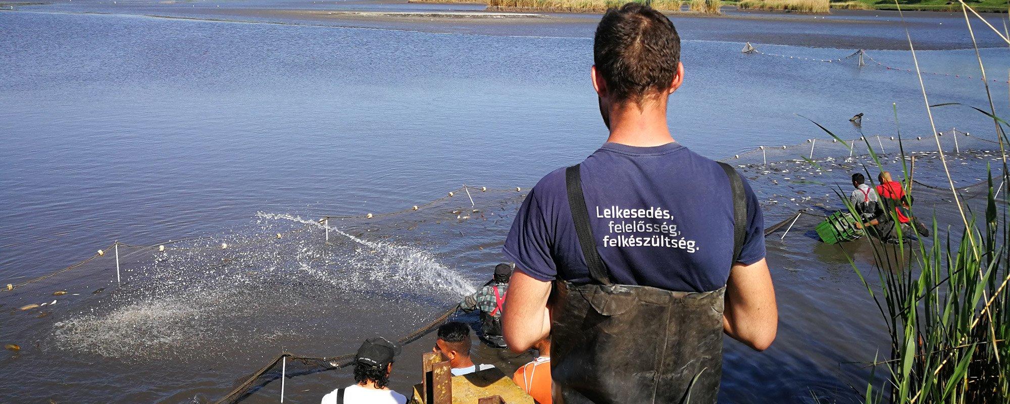 Instandhaltung von Seen